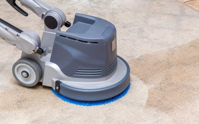What Bacteria Lurks in Your Carpet? Here's How Image One's Commercial Cleaning Services Can Help