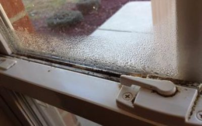 Recent Storms Could Cause Mold Growth On Your Commercial Property